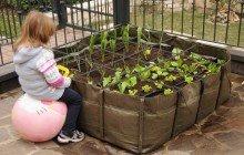 Avere un orto sul balcone non è meno impegnativo di possedere delle piante da fiore. Bisogna considerare che il tempo che richiedono non è superiore a qualsiasi altra pianta ornamentale.