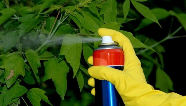 pesticidi naturali