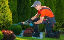 albo giardinieri-professionisti